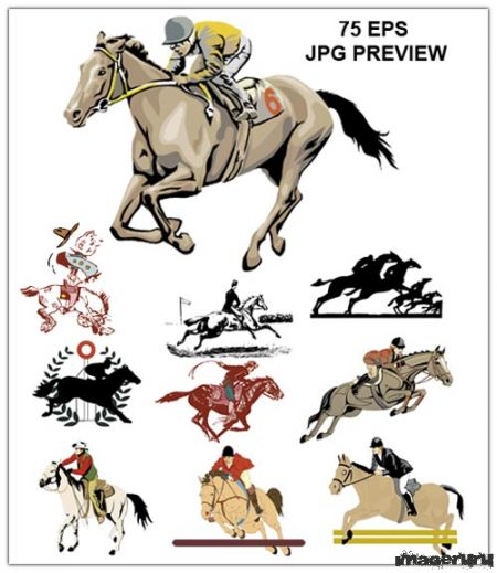 Лошади и жокеи