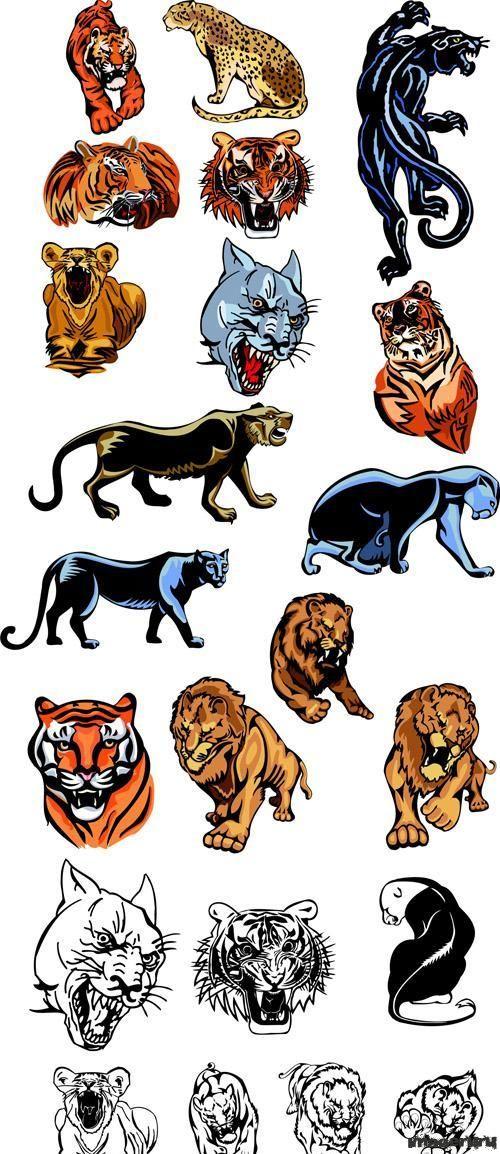 платья для фотографии символы в японии тигра пантеры и льва вопроса: