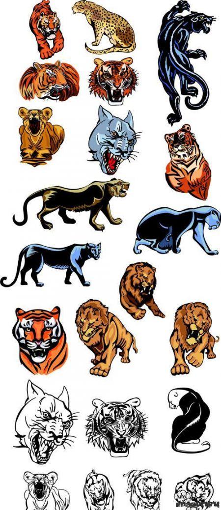 Векторные татуировки - пантеры, тигры, львы