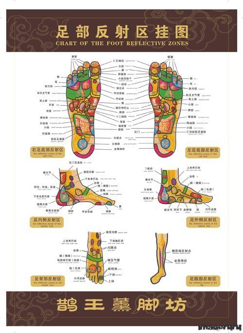 Точки иглоукалывания на ногах