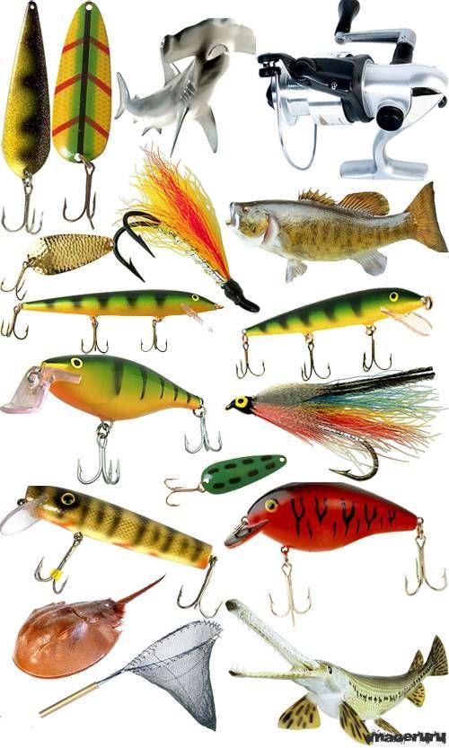 Снасти рыболовные Фото, Изображение Снасти рыболовные.