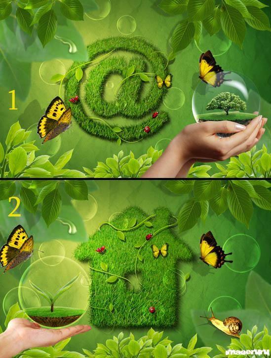 Зелёная жизнь