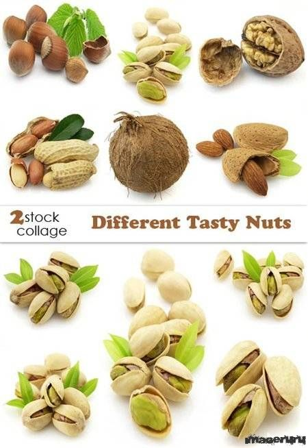 Фундук, арахис, фисташки, кокос, миндаль и другие орехи