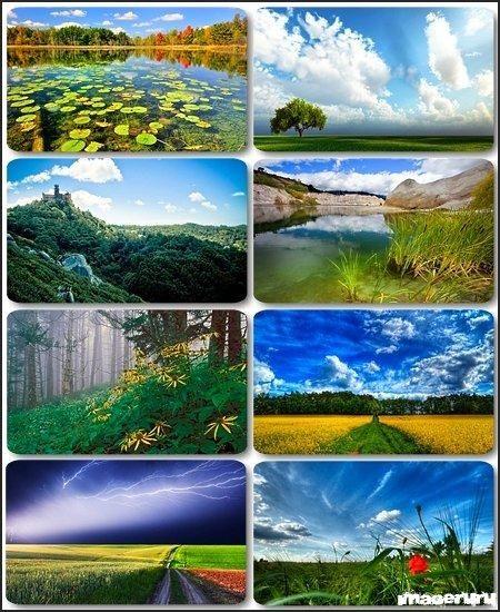 Красивые природные фоны ч.16