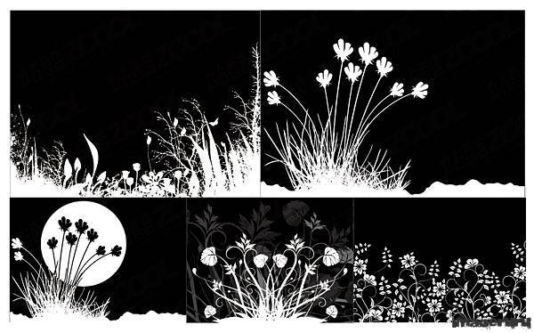 Чёрно-белые цветочные орнаменты