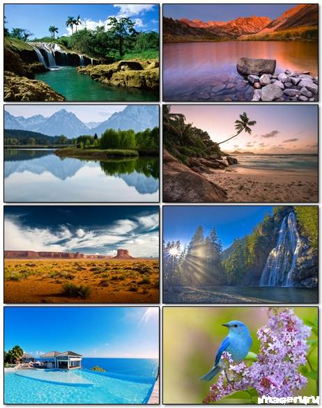 Nature Wallpapers Mix 12