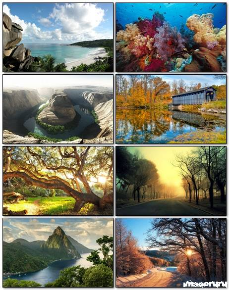 Nature Wallpapers Mix 21