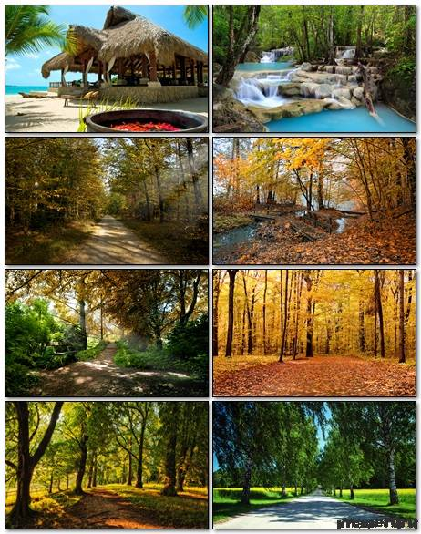 Nature Wallpapers Mix 32