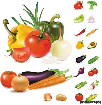 Векторные овощи