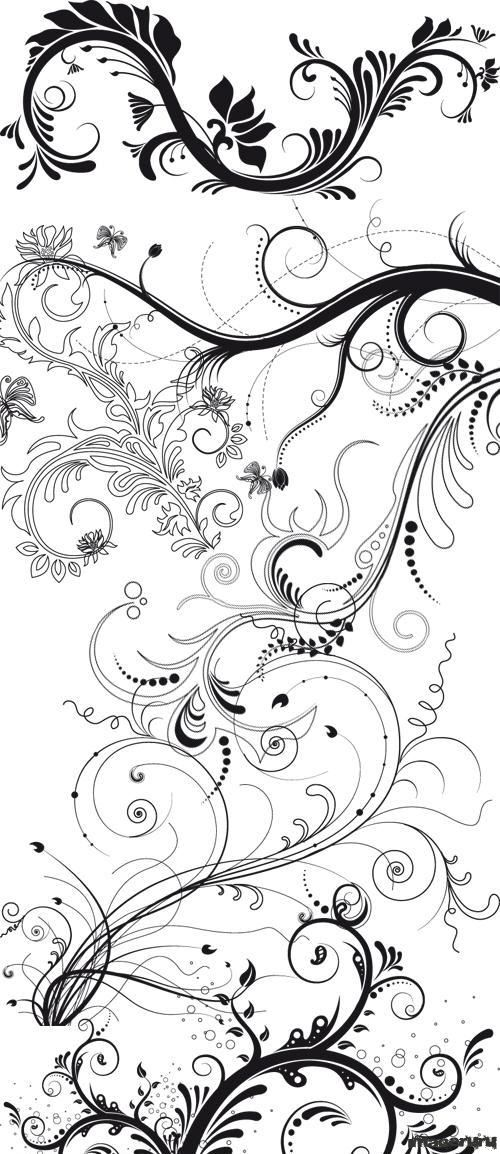 Черно-белые растительные орнаменты