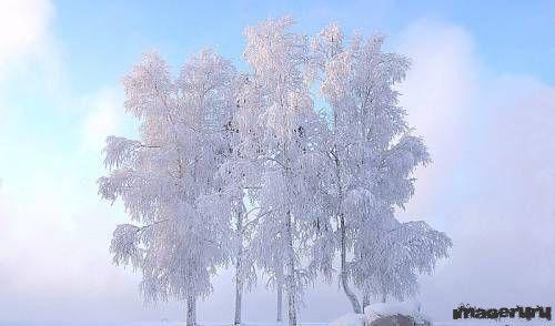 Зимние обои
