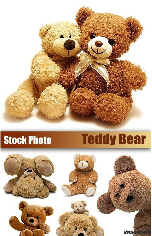 Мишки Тедди (Teddy Bear)