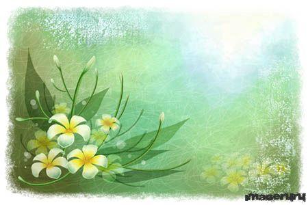 Шаблон с цветами