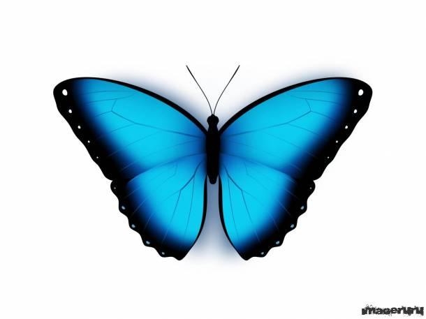 Бабочка - исходник PSD