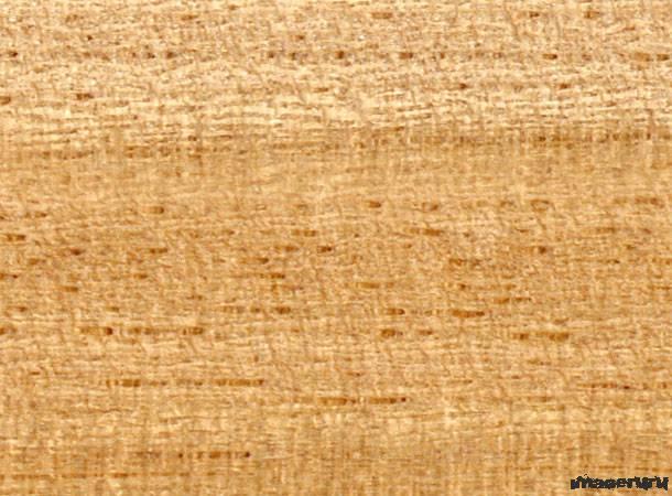 16 текстур древесины