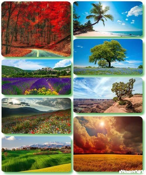 Потрясающие пейзажи природы 41