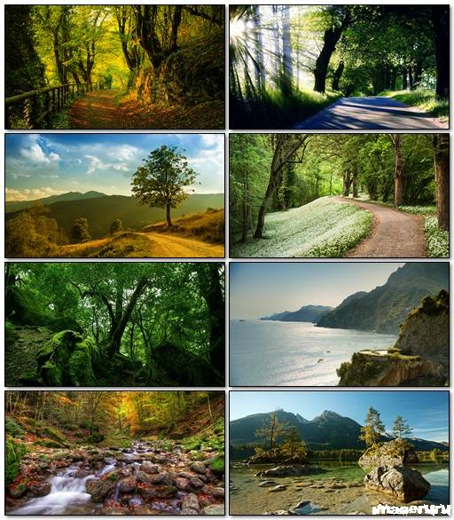 Nature Wallpapers Mix 1