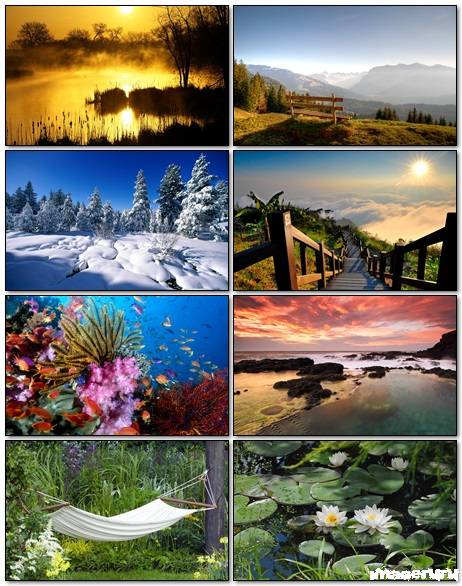 Nature Wallpapers Mix 11