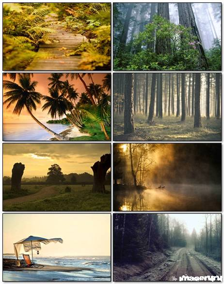 Nature Wallpapers Mix 31