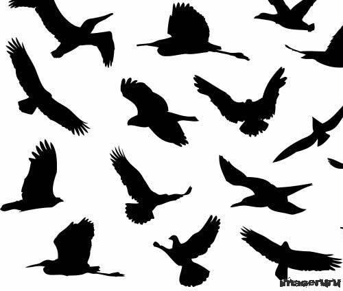 Силуэты птиц кисти для фотошоп